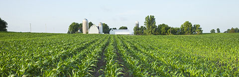 Three Estate Planning Mistakes Farmers and Ranchers Make